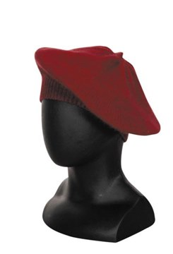 Picture of Native World Beret Seamless